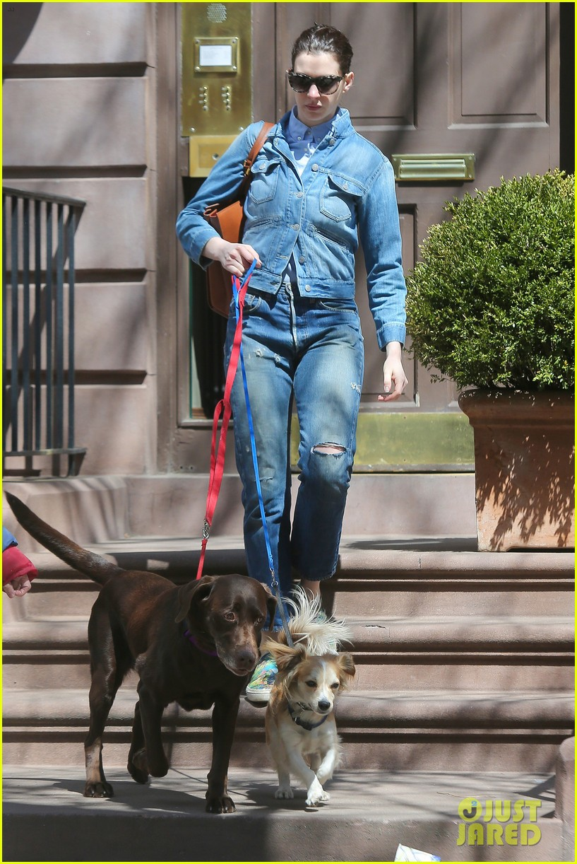 anne hathaway adam shulman walk the dogs 153346500
