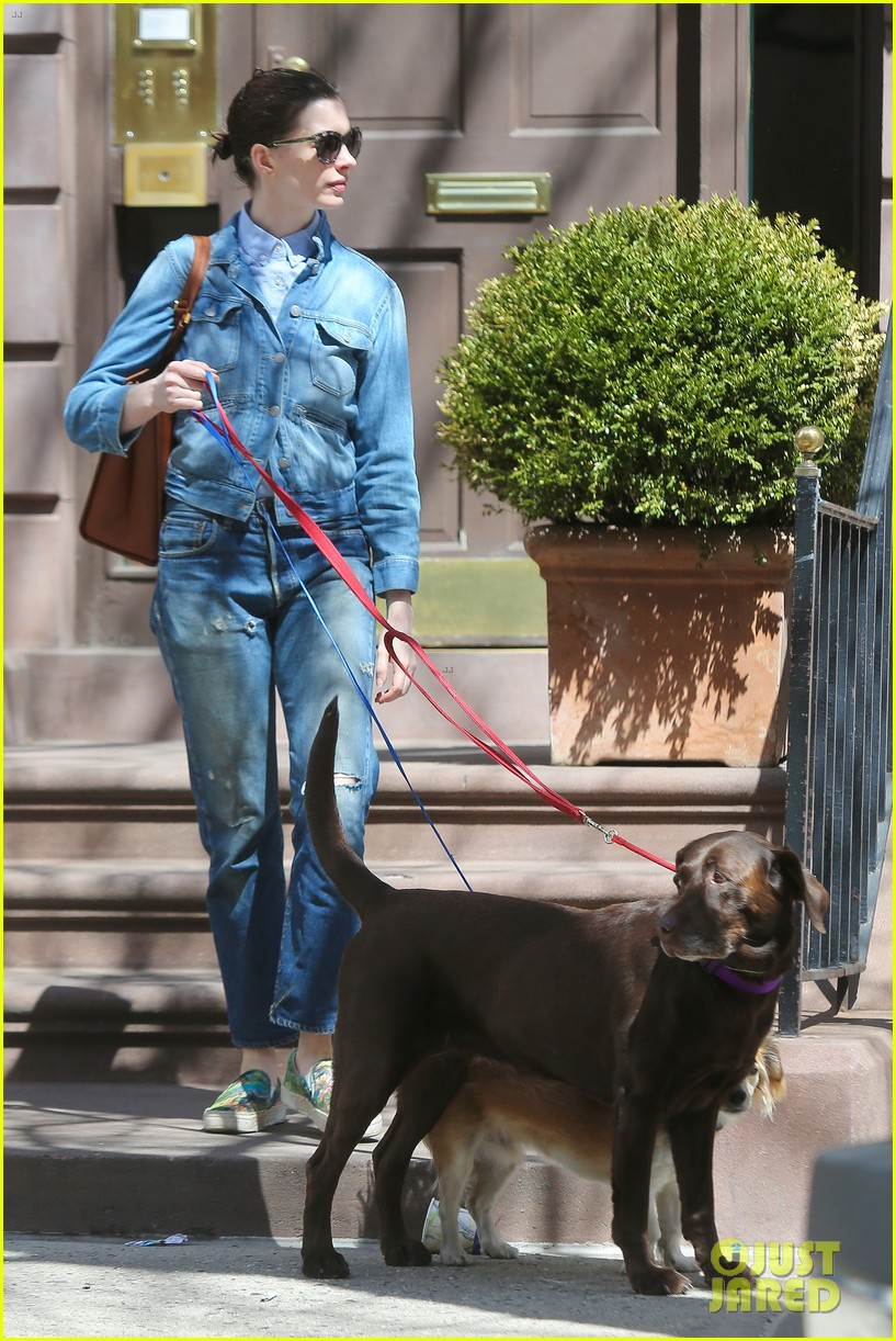 anne hathaway adam shulman walk the dogs 193346504