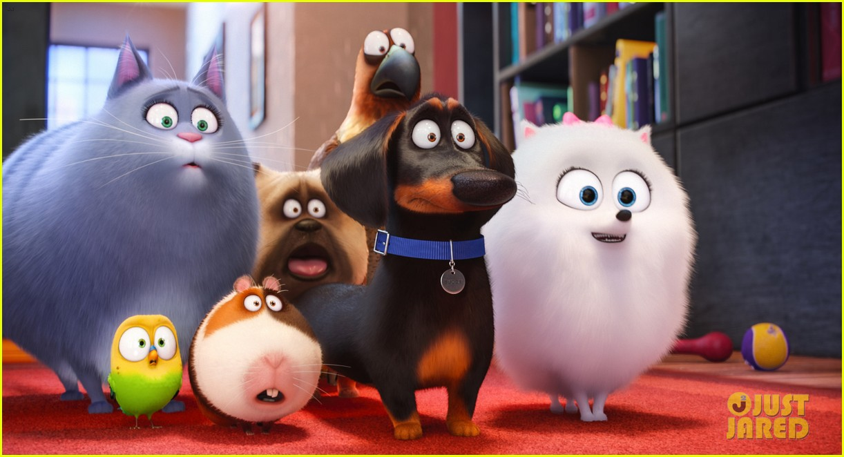 secret life of pets sequel hits theaters in 2018 063724111