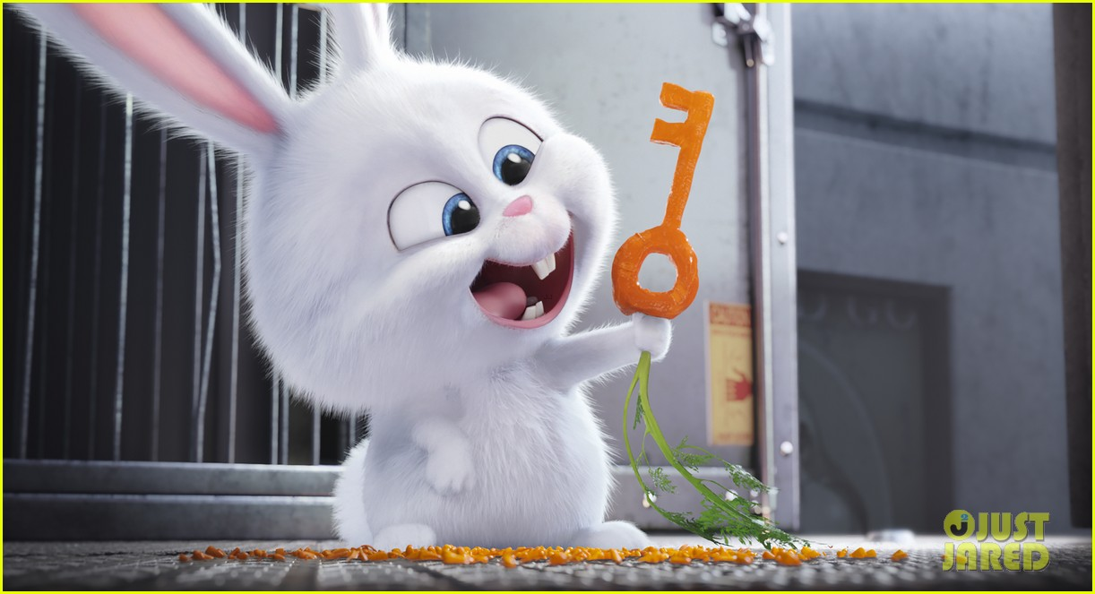 secret life of pets sequel hits theaters in 2018 083724113