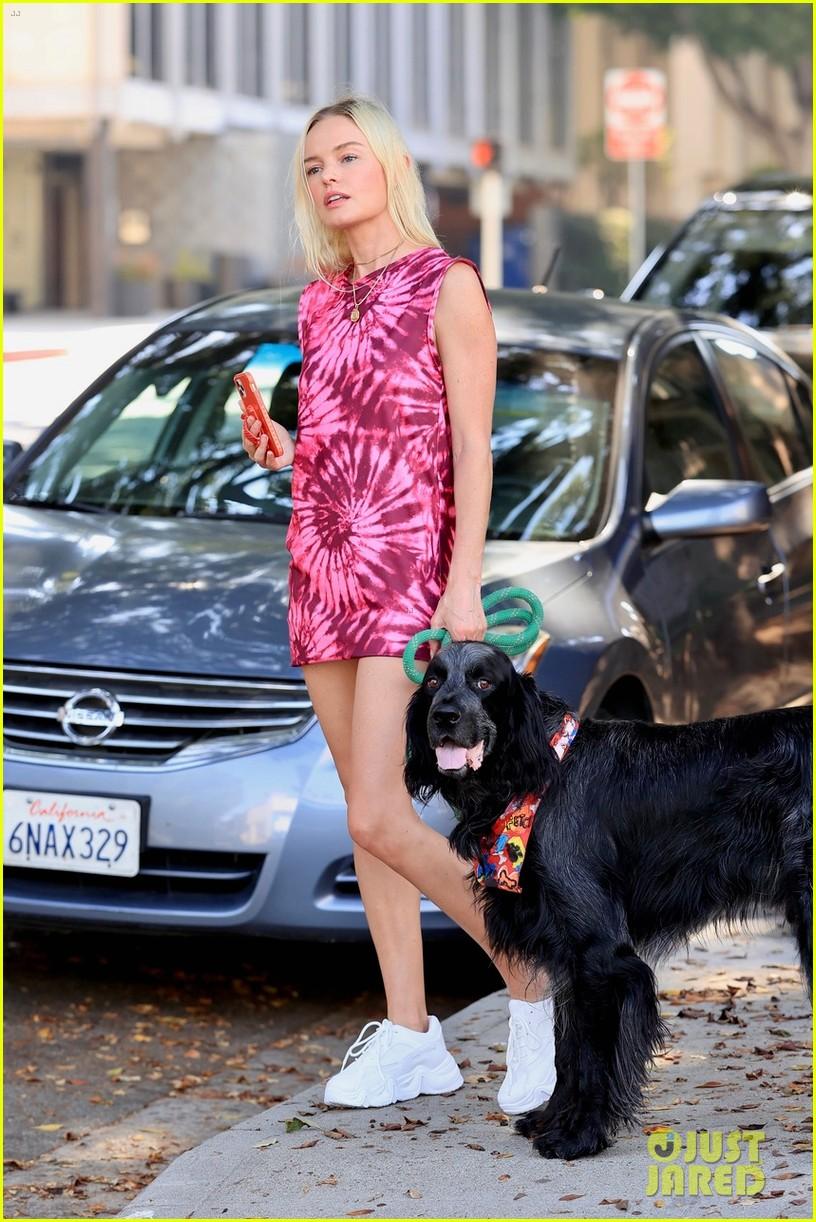 kate bosworth wears 11 dollar dress 02.4478036