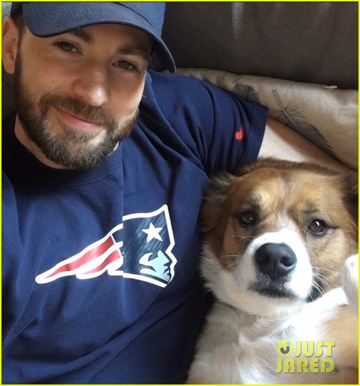 fans sharing pics of chris evans with dog dodger 084482815