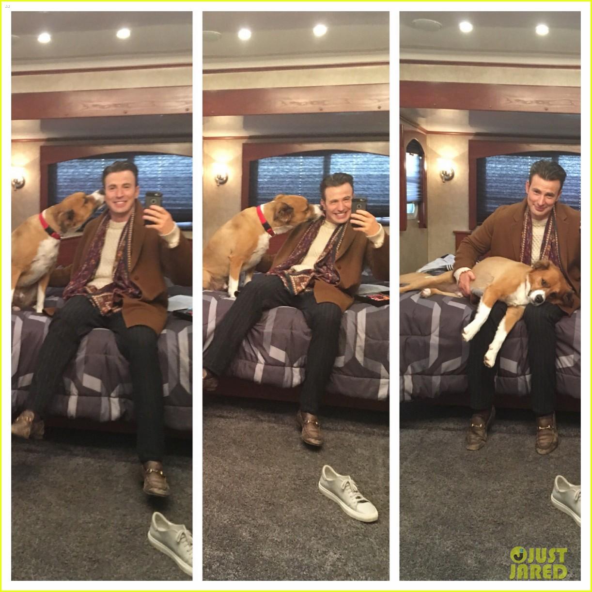 fans sharing pics of chris evans with dog dodger 224482829