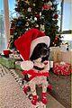 nina dobrev shaun white twin santa hats on christmas 07