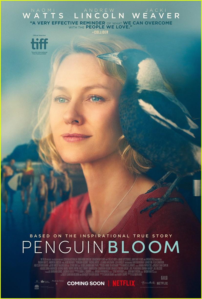 penguin bloom not about penguins 054520477