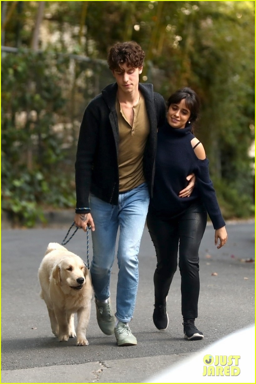shawn mendes camila cabello share kiss walking dog 064535199