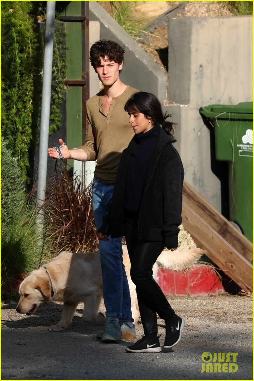 shawn mendes camila cabello share kiss walking dog 084535201