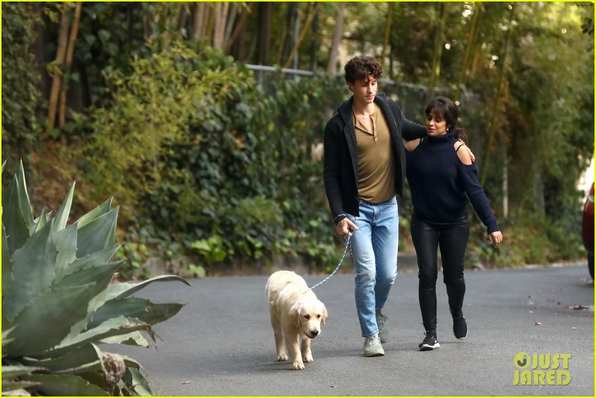 shawn mendes camila cabello share kiss walking dog 204535213