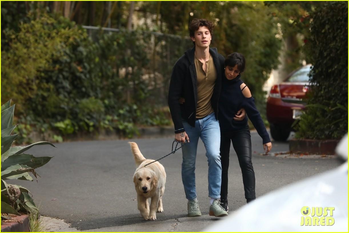 shawn mendes camila cabello share kiss walking dog 354535228