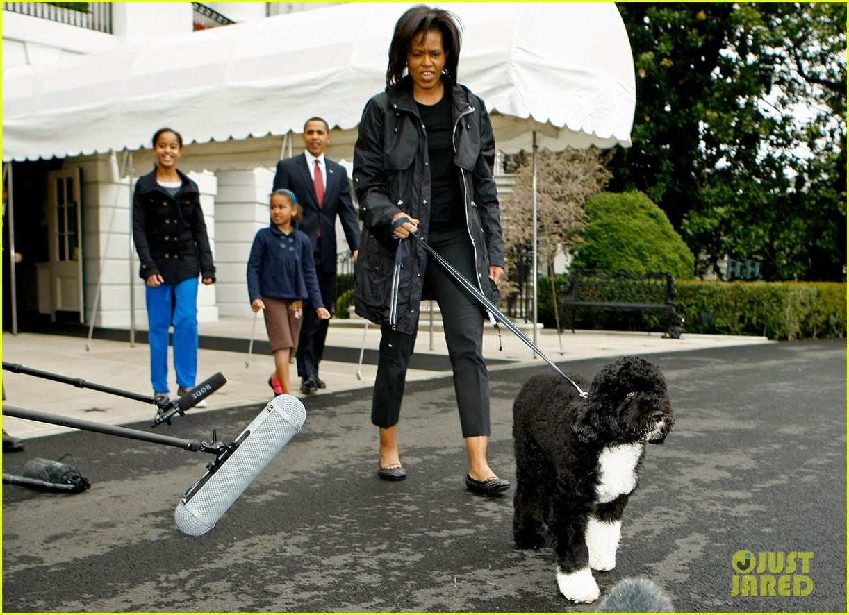 obamas mourn death of dog bo 064553773