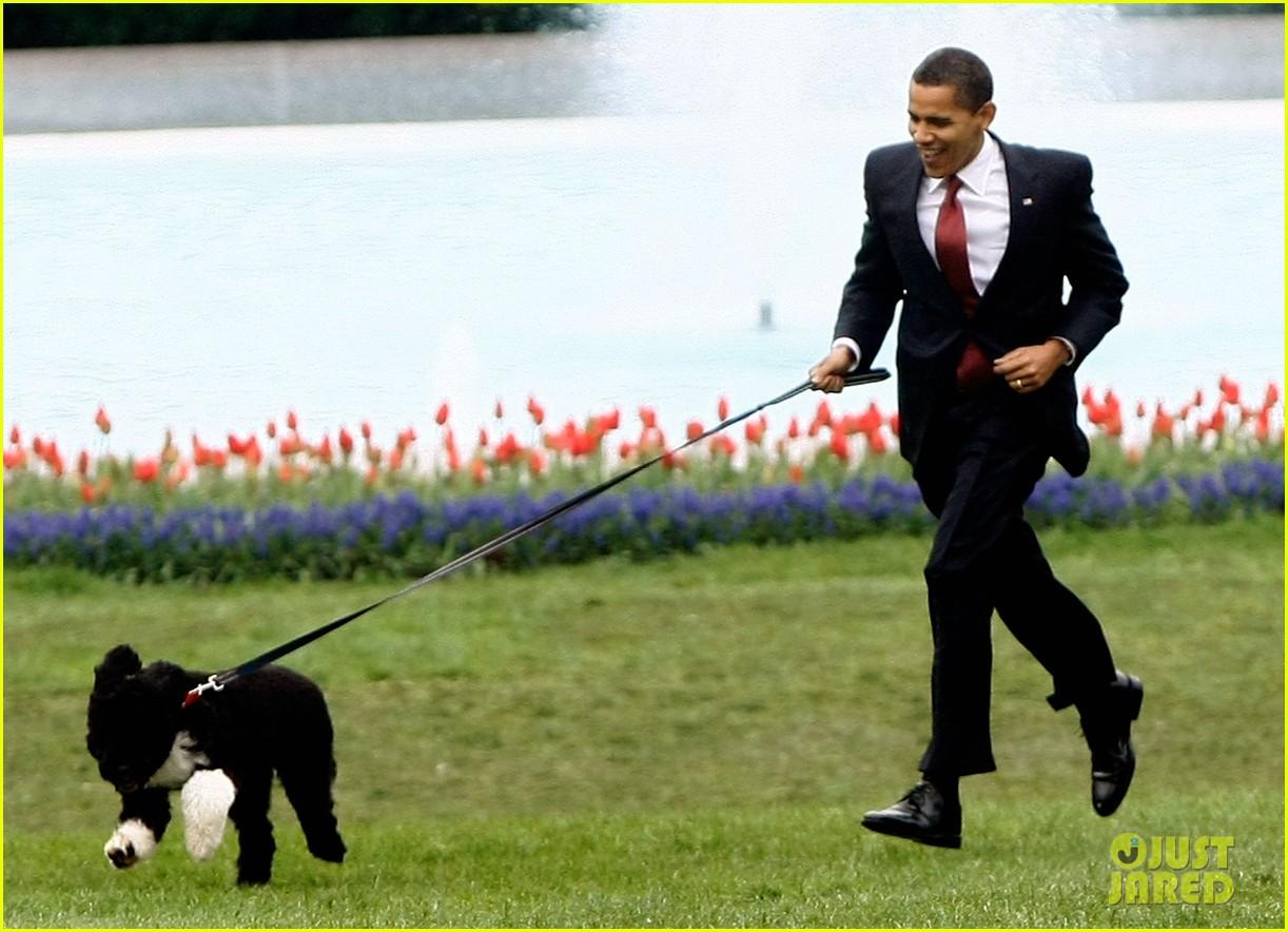 obamas mourn death of dog bo 124553779