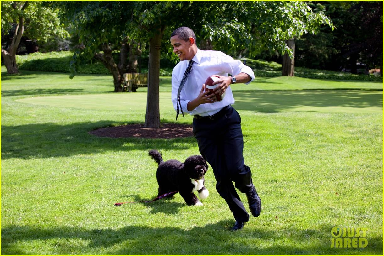 obamas mourn death of dog bo 204553787