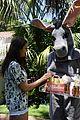 kate hudson sends alcohol and donkey to celeb friends 27.