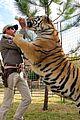 tiger king 2 release date november 01