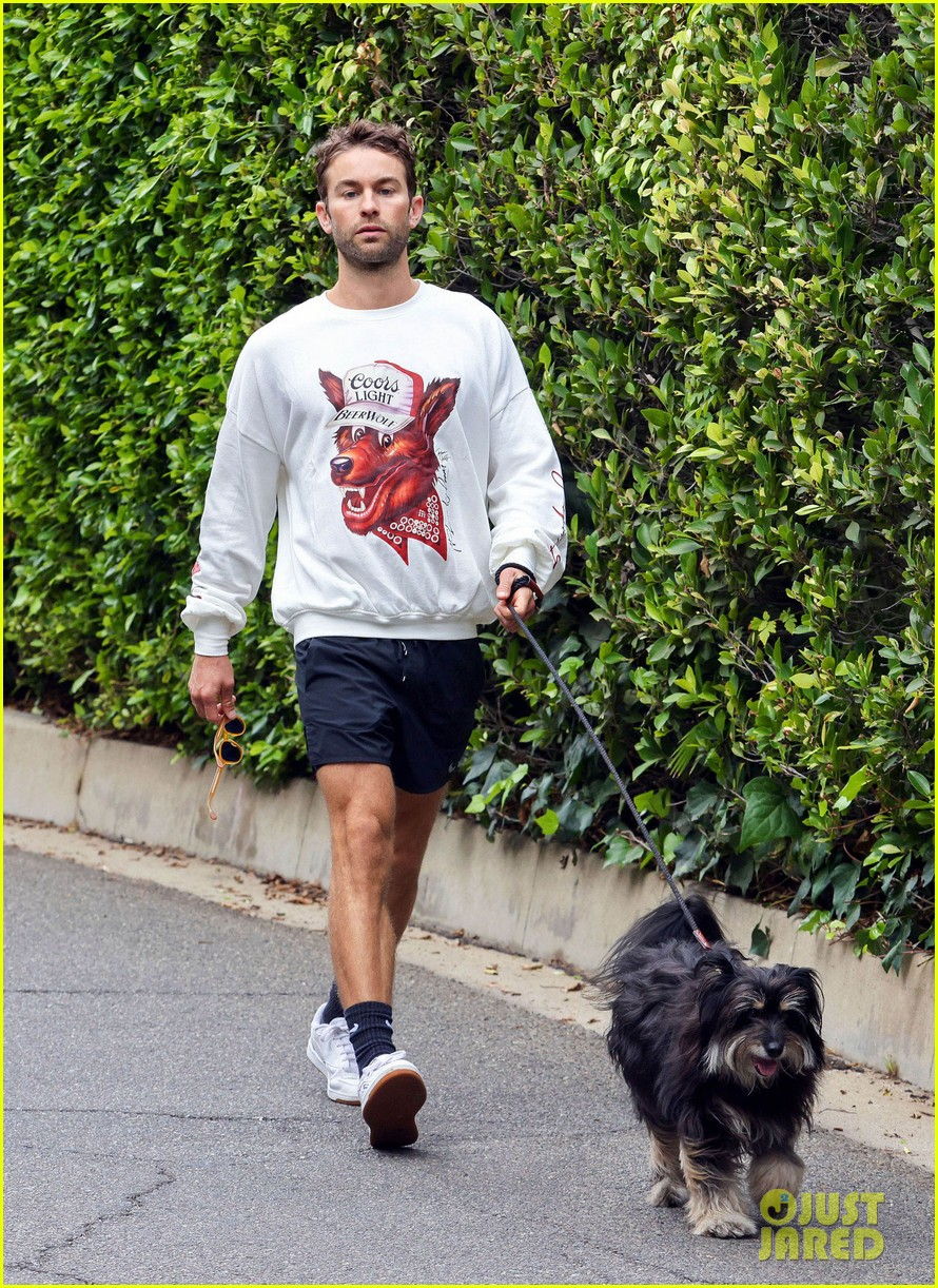 chace crawford morning walk with dog shiner 014643734