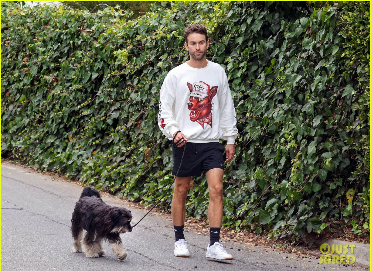chace crawford morning walk with dog shiner 074643740