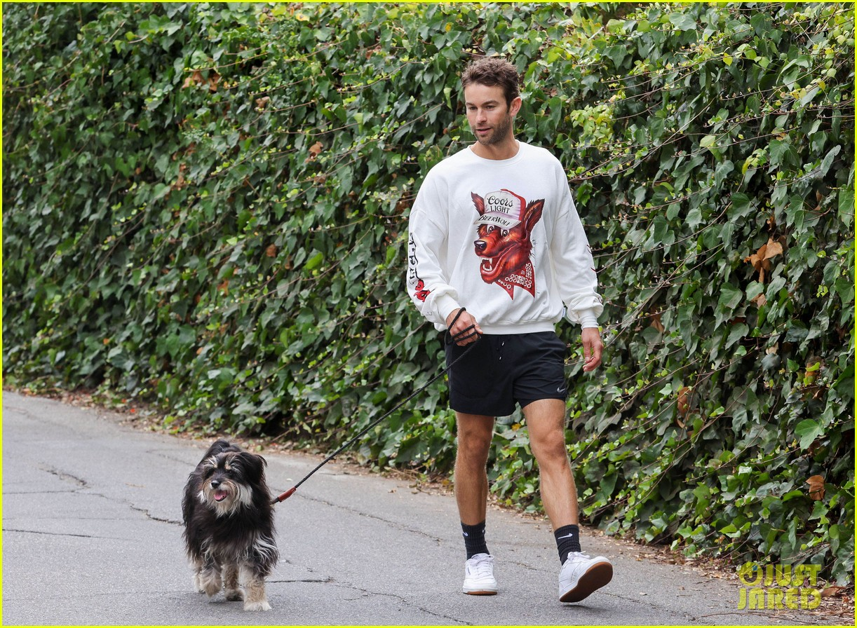 chace crawford morning walk with dog shiner 094643742