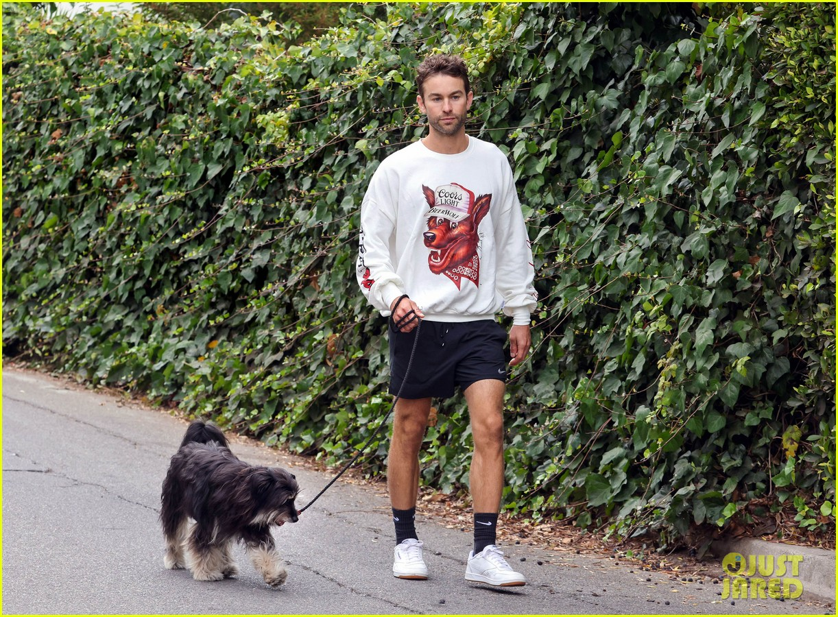chace crawford morning walk with dog shiner 114643744