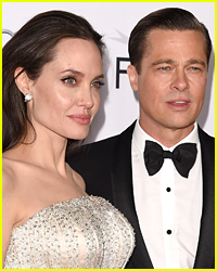 Angelina Jolie Filed New Documents in Brad Pitt Divorce Over Their Wine Company