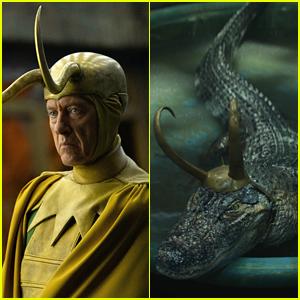 Richard E. Grant's 'Loki' Spin-Off Idea Will Delight Fans Of The Series