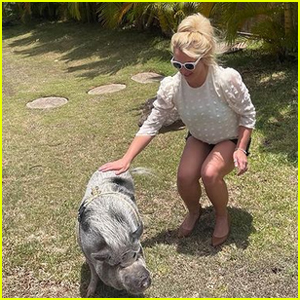 Britney Spears Meets a Pig, Reveals She Does Equine Therapy for Social Anxiety