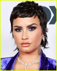 Demi Lovato Shares New Insight Into Their Relationship with Ex Max Ehrich