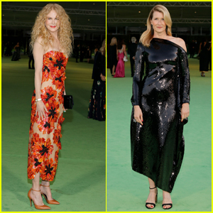 Nicole Kidman & Laura Dern Go Glam for Academy Museum of Motion Pictures Opening Gala